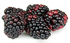 2 pts blackberries