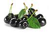 1 c fresh black cherries