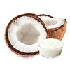1 cup coconut cream