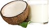 13.5 oz plain coconut milk