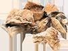 2 oz dried porcini mushrooms