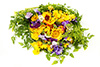 3  edible flowers