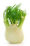 0.5 cups fennel bulb