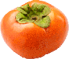 1  fuyu persimmon