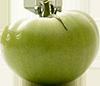 1 large green tomato