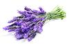 1 Tbsp fresh lavender