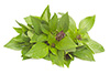 1 tablespoon fresh basil