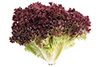 1 bunch red leaf lettuce