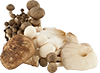 1 cup wild mixed mushrooms