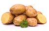 1.5 lb creamer potato