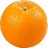 1 slices fresh orange