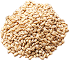 1 cup instant barley