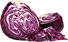 0.25  red cabbage