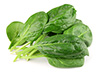 0.25 lb fresh spinach