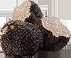 1  truffle mushroom