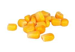 Image of canned corn