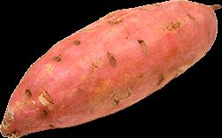 Image of sweet potato