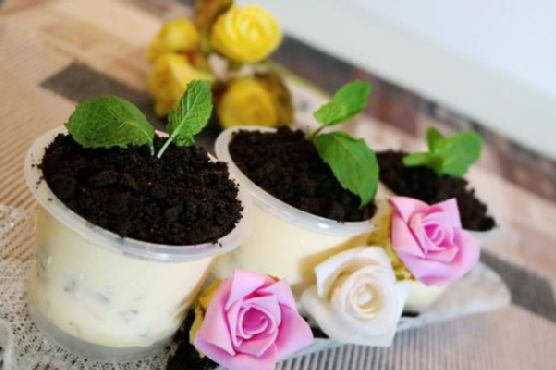 Valentine's Day Potted Plant Ice-Cream Desserts