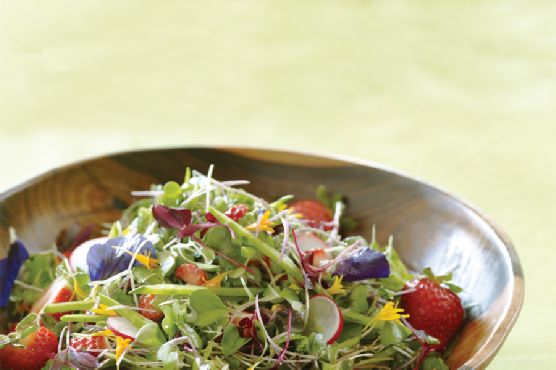 Microgreens with Strawberry-Lime Vinaigrette